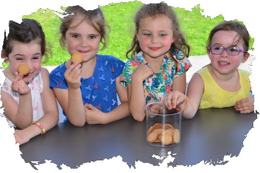 lilalou-biscuits-schoolkoek